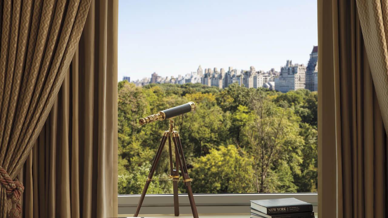 Ventana con vista al parque desde el hotel The Ritz Carlton New York, Central Park